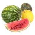 Melão e melancia   Os benefícios dos sucos naturais para tratamento de doenças